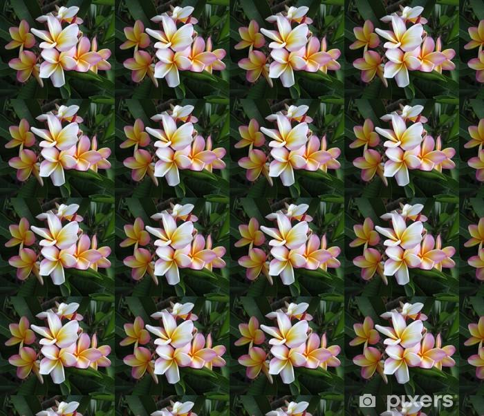 Tapeta na wymiar winylowa Różowy Plumeria - Kwiaty