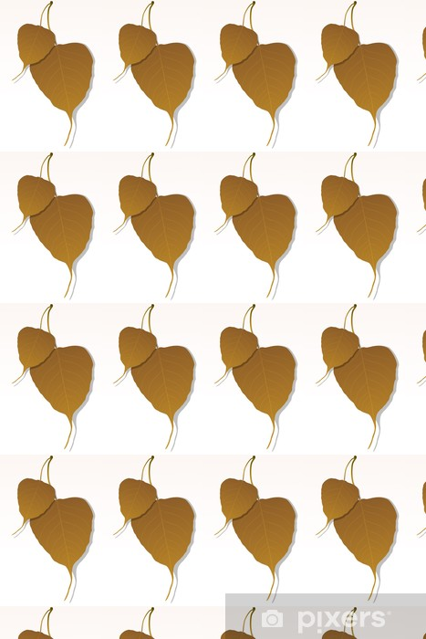 Tapeta na wymiar winylowa Liść klonu - Rośliny