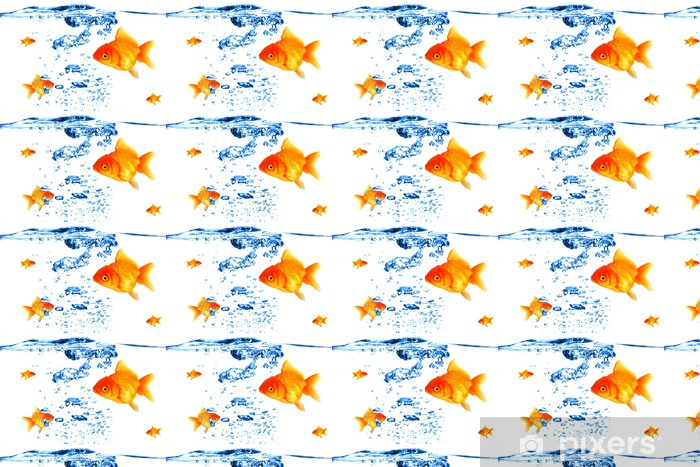 Tapeta na wymiar winylowa Złoty oddychanie ryb pod wodą - Zwierzęta żyjące pod wodą