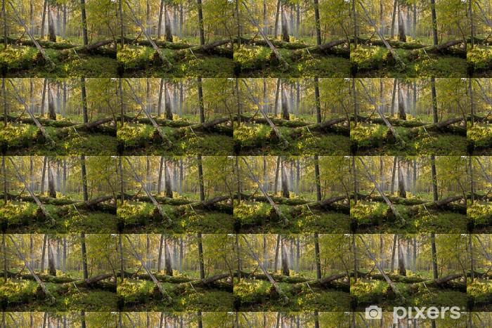 Vinylová tapeta na míru Staré duby zlomené ležící - Evropa