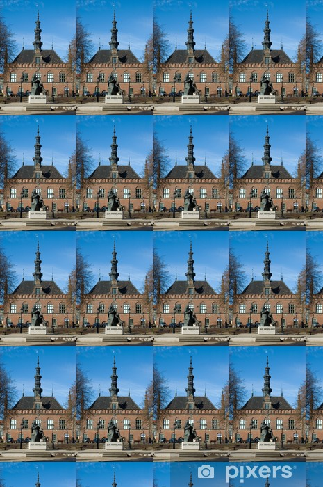 hevelius monument and old town hall gdansk Vinyl custom-made wallpaper - Europe