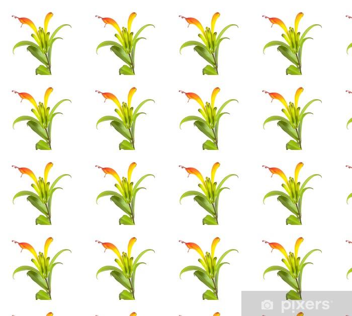 Papier peint vinyle sur mesure Usine de rouge à lèvres (Aeschynanthus speciosus) - Fleurs