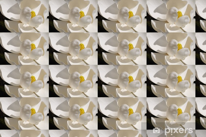 Magnolia grandiflora Vinyl custom-made wallpaper - America