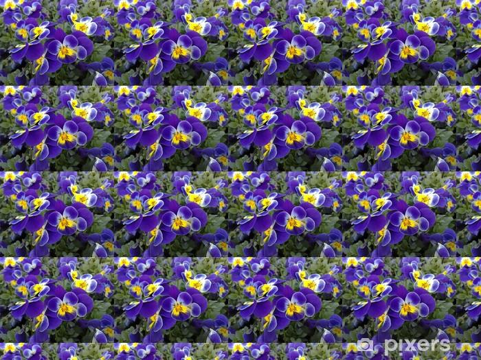 Tapeta na wymiar winylowa Viola cornuta na niebiesko z żółtym oka - Kwiaty