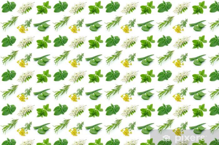 Vinyltapete nach Maß Medicinal herbs - Pflanzen