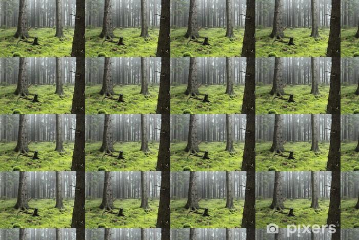 Papier peint vinyle sur mesure Cloud Forest - Sports d'extérieur