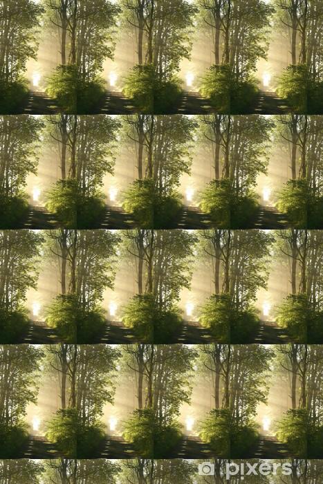 Vinyltapete nach Maß Dirt road in Laubwald an einem nebligen Frühlingsmorgen - Themen