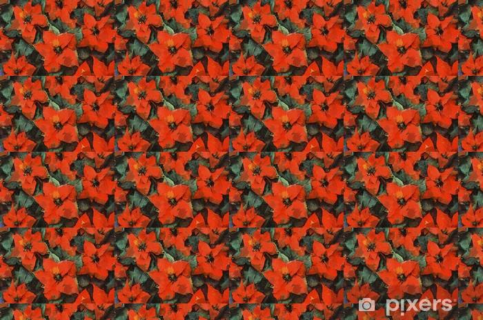 Papier peint vinyle sur mesure Poinsettia Fleurs Peinture - Fleurs