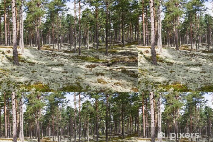 Carta da Parati a Motivi in Vinile Licheni delle renne - Foreste