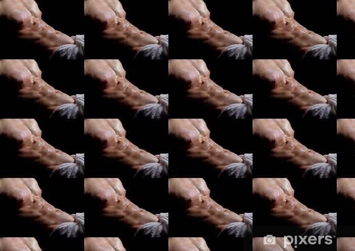 Vinyltapete nach Maß Wet Bodybuilder - Körperteile
