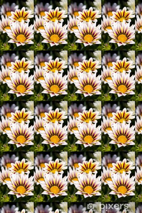 Vinyl behang, op maat gemaakt Spaanse margriet - Bloemen
