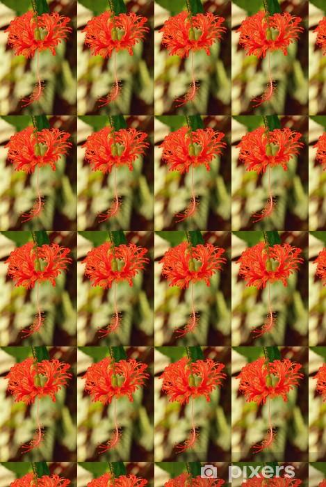 Papier peint vinyle sur mesure Pfeifenputzer Pflanze - Bottlebrush usine 01 - Fleurs