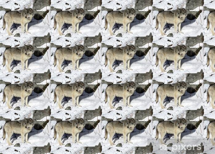 Vinylová tapeta na míru Devant un rocher - Témata