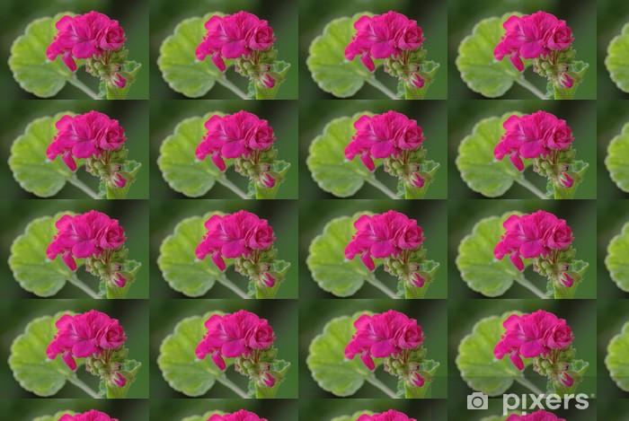 Papier peint vinyle sur mesure Géranium rose 3 - Fleurs