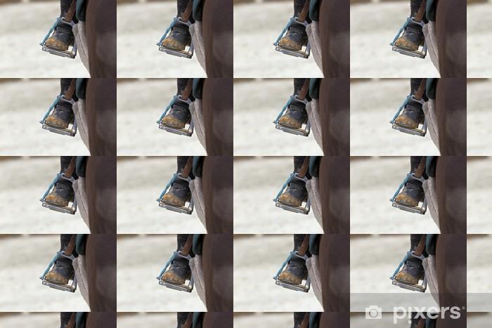 Vinylová tapeta na míru Detailní záběr na koni Stirrup - Život