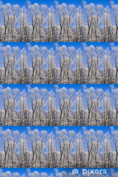 Papier peint vinyle sur mesure Grands arbres - Saisons