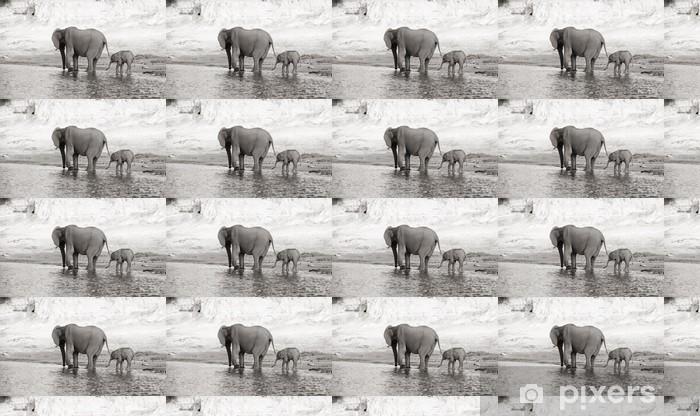 Tapeta na wymiar winylowa Stado słoni afrykańskich - Tematy