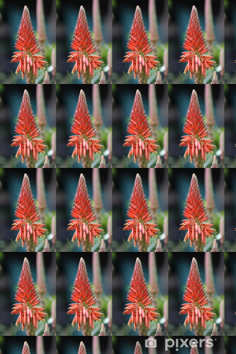 Vinyltapete nach Maß Agave Blume - Blumen