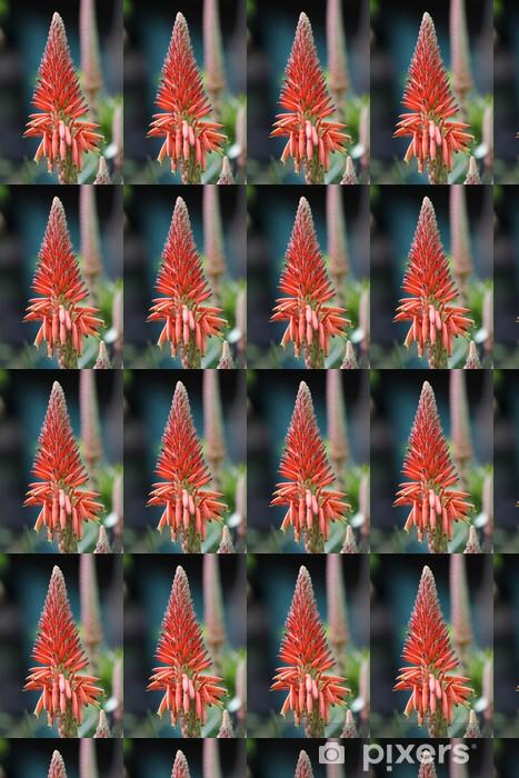 Tapeta na wymiar winylowa Agave kwiat - Kwiaty