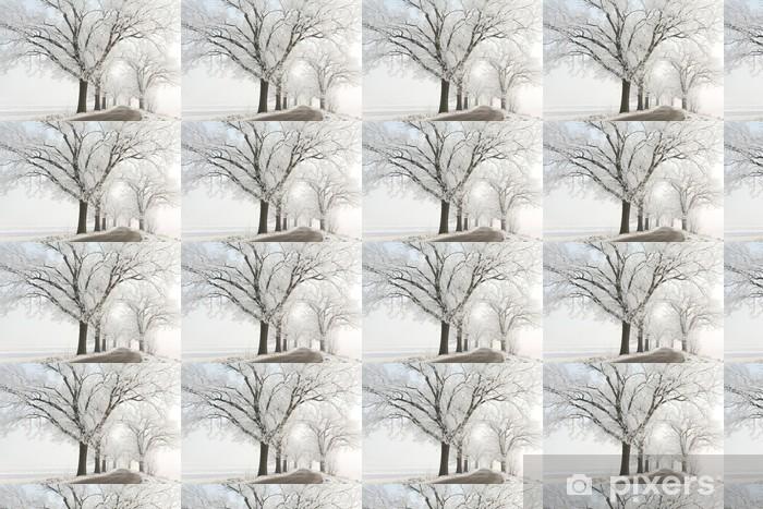 Papier peint vinyle sur mesure Hiver voie parmi les vieux chênes majestueux couverts de givre - Campagne