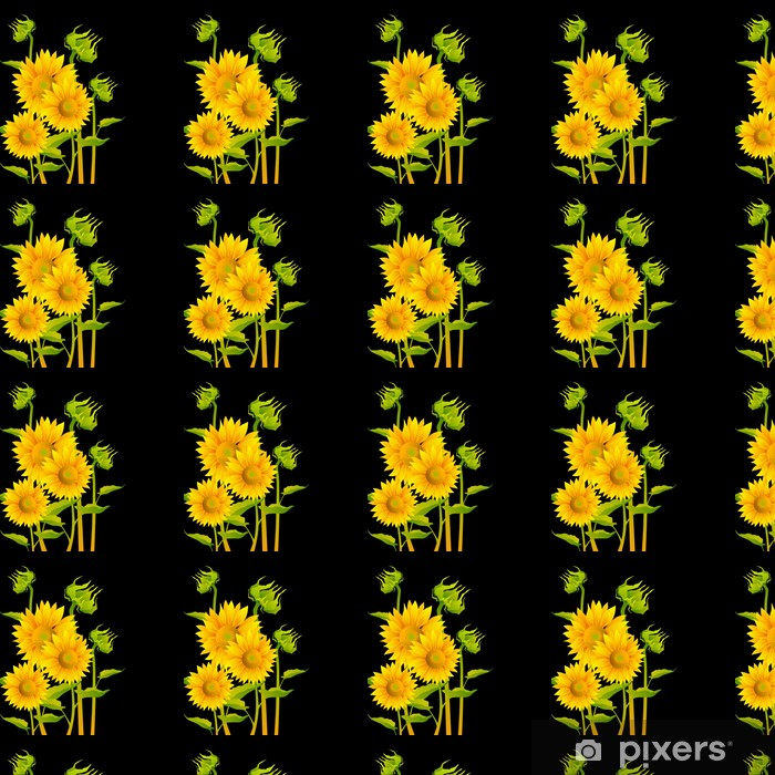 wallpapers beautiful yellow sunflowers on black background.jpg
