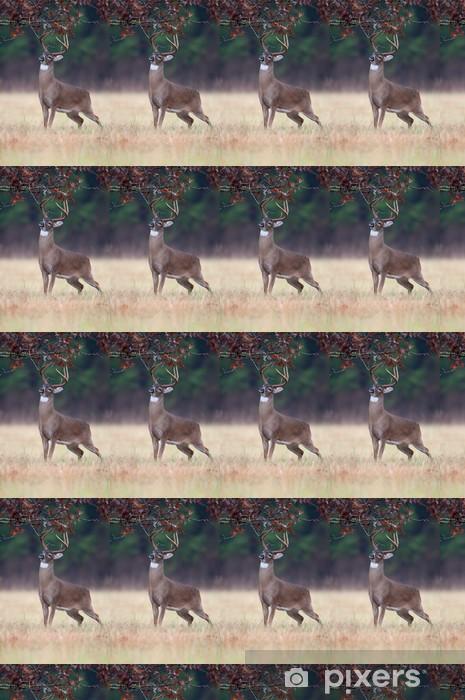 Tapeta na wymiar winylowa Bielik ruja samiec jelenia zachowanie - Tematy