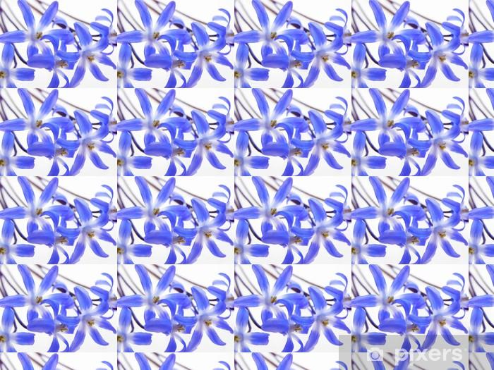 Vinyl behang, op maat gemaakt Blauw voorjaar scilla - Seizoenen