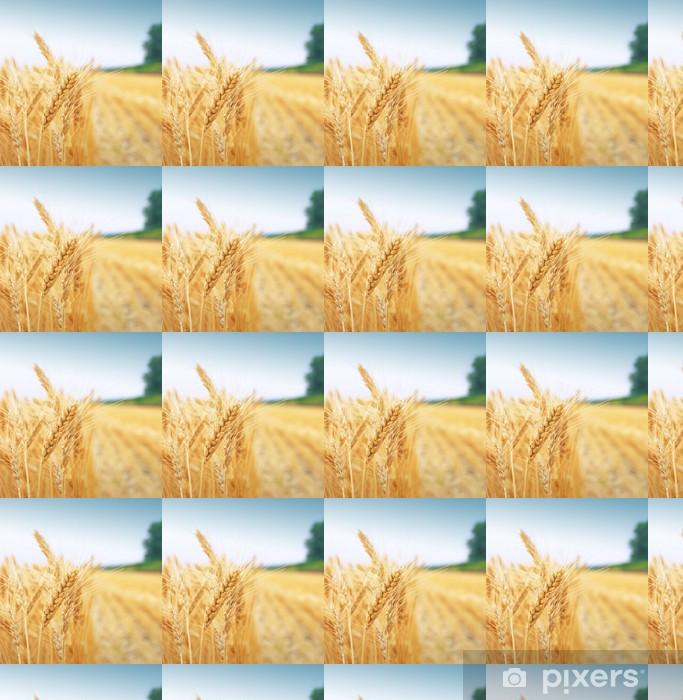 Vinyl behang, op maat gemaakt Graanveld - Landbouw