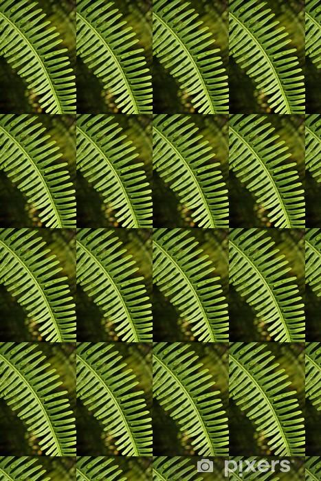 Vinyltapete nach Maß Fern Blatt, Textur der Farn Baum mit einem Tropfen Tau - Pflanzen