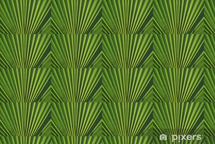 Papier peint à motifs vinyle Macro, ARGUMENTS. PALMITO, CHAMAEROPS HUMILIS - Plantes