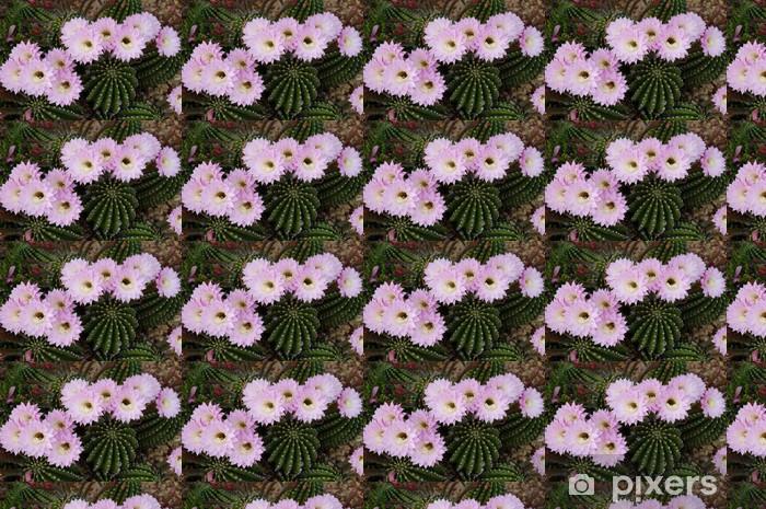 Vinyltapete nach Maß Rosa Blumen Kaktus - Blumen