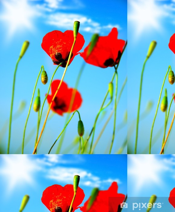 Vinylová Tapeta Mák květiny louka - Témata