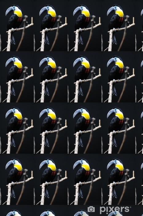Tapeta na wymiar winylowa Wklęsłe usta tukan - Ptaki