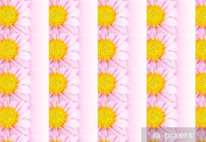 Tapeta na wymiar winylowa Różowy kwiat stokrotka - Tła