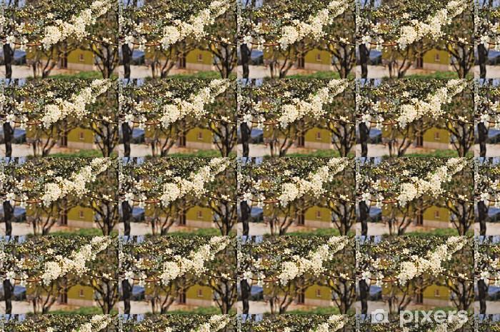 Battifollo, alberi di susino kukassa Räätälöity vinyylitapetti - Maaseutu