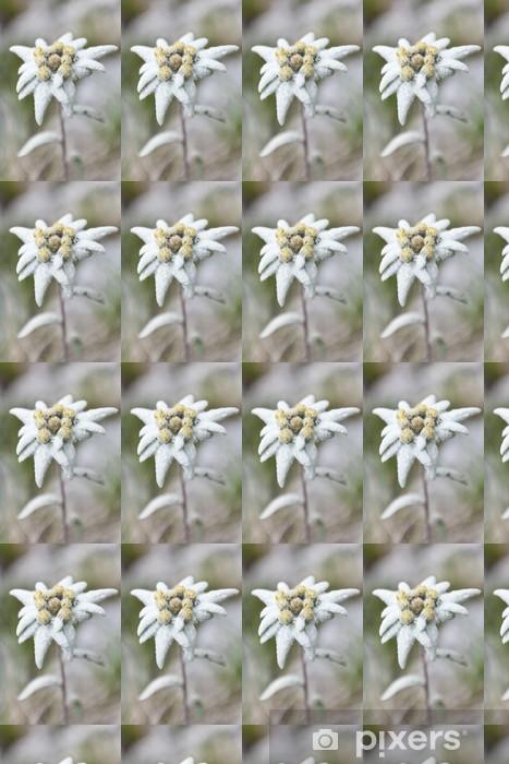 Papel pintado estándar a medida Edelweiss - Flores