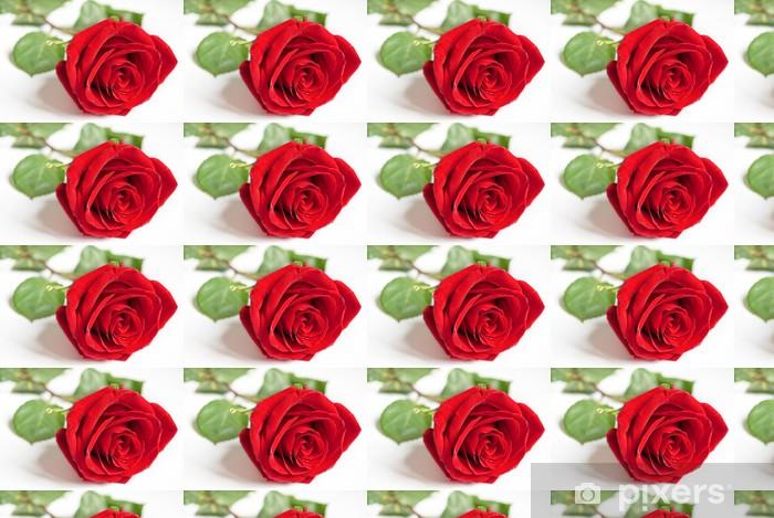 Vinyltapete nach Maß Big rote Rose. - Paare