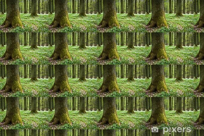 Papier peint vinyle sur mesure Vieil arbre moussu et anémones blanches dans la forêt - Ecologie