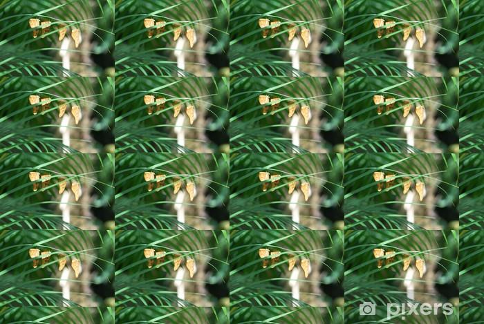 Vinylová tapeta na míru Čtyři oranžové motýli visí na trávě - Ostatní Ostatní