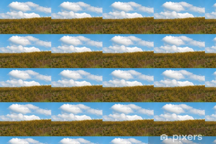 Vinylová tapeta na míru Fiori gialli e cielo Azzurro su una Collina in Toscana - Venkov