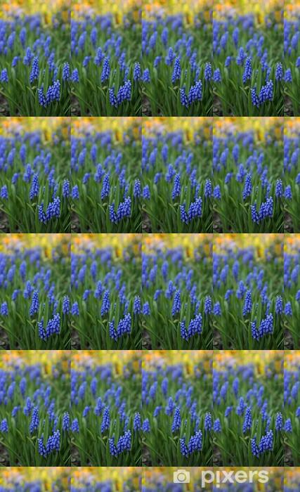 Vinyltapete nach Maß Frühling Blumen Muscari mit farbigem Hintergrund - Blumen