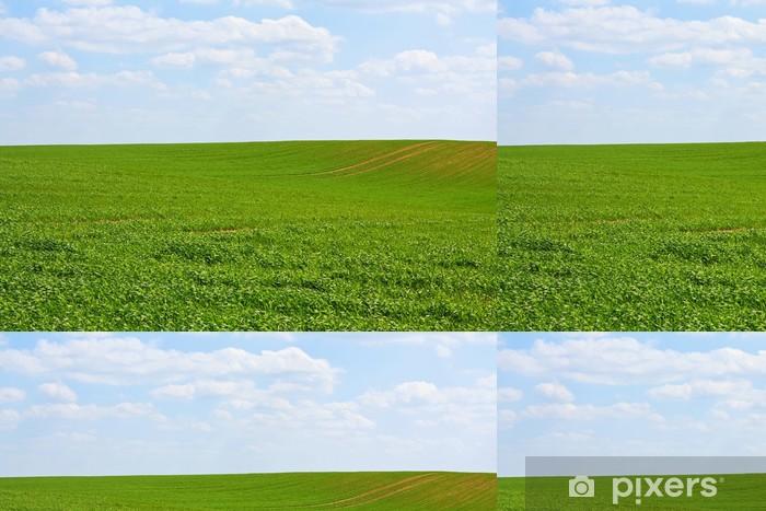 Vinylová Tapeta Rolling zelené kopce a modrá obloha - Zemědělství