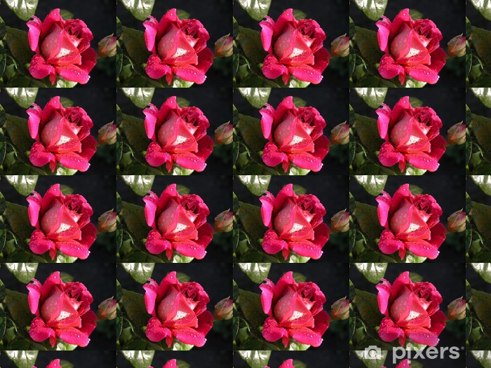 Tapeta na wymiar winylowa Royal Rose - Tematy