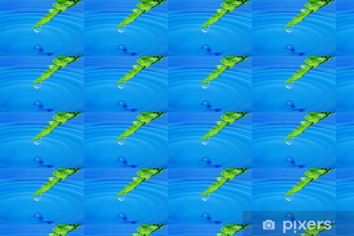 Papier peint vinyle sur mesure Goutte d'eau sur une feuille verte fraîche - Plantes