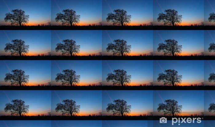 Vinyltapete nach Maß Bild Schöne Landschaft mit Bäumen Silhouette bei Sonnenuntergang. - Bäume
