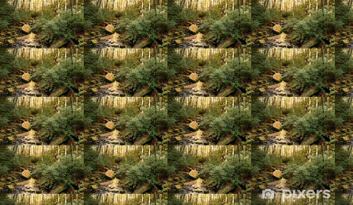Papier peint vinyle sur mesure Forest Stream à l'automne - Saisons