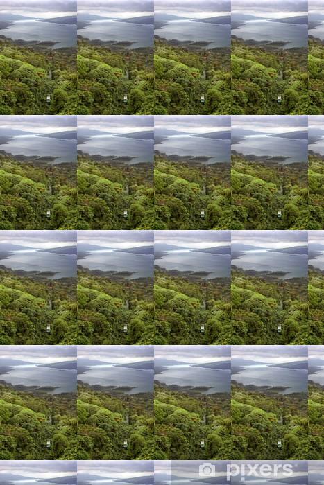 Rain Forest Tram over Lake Arenal, Costa Rica Vinyl custom-made wallpaper - America