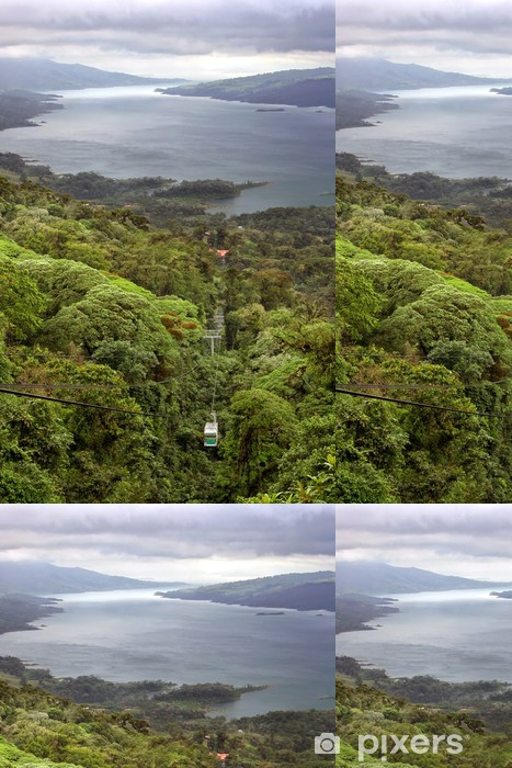 Rain Forest Tram over Lake Arenal, Costa Rica Vinyl Wallpaper - America