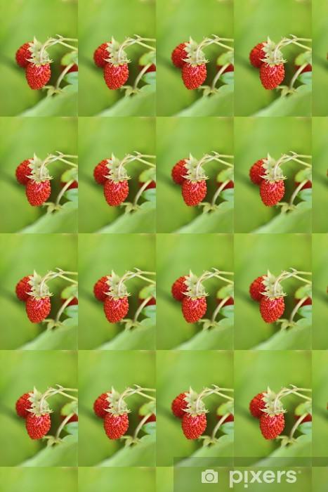 Papier peint vinyle sur mesure Poziomka - Fruits
