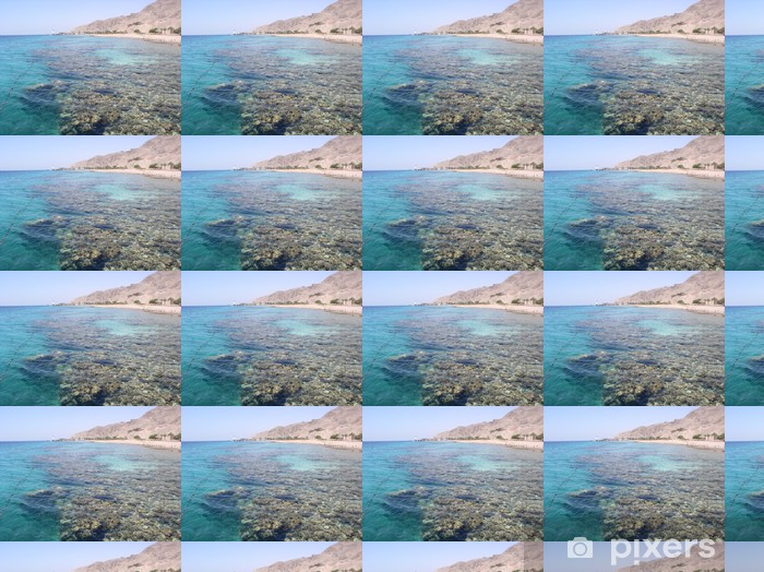 Carta da parati in vinile su misura Mare corallo morto - Acqua